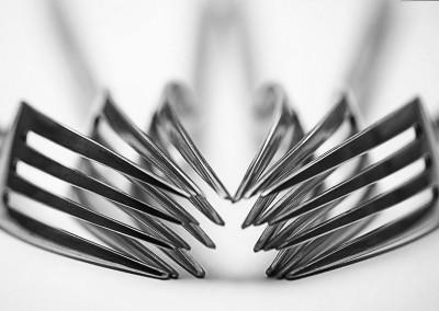 Focussed-Fork
